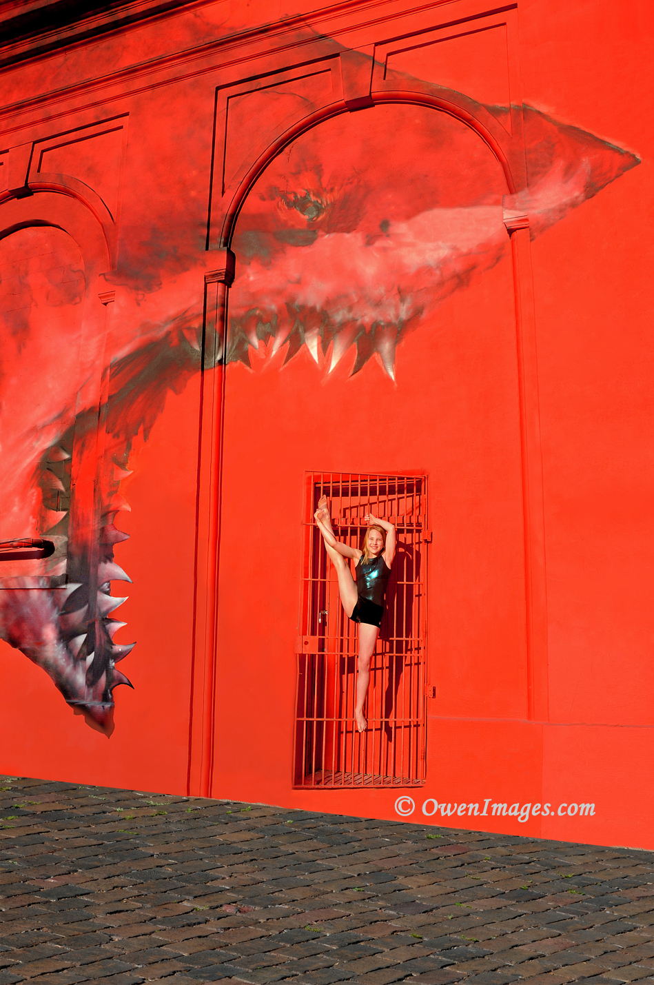 Gymnast 2 about to be eaten by the Shark mural in downtown St Petersburg, Florida