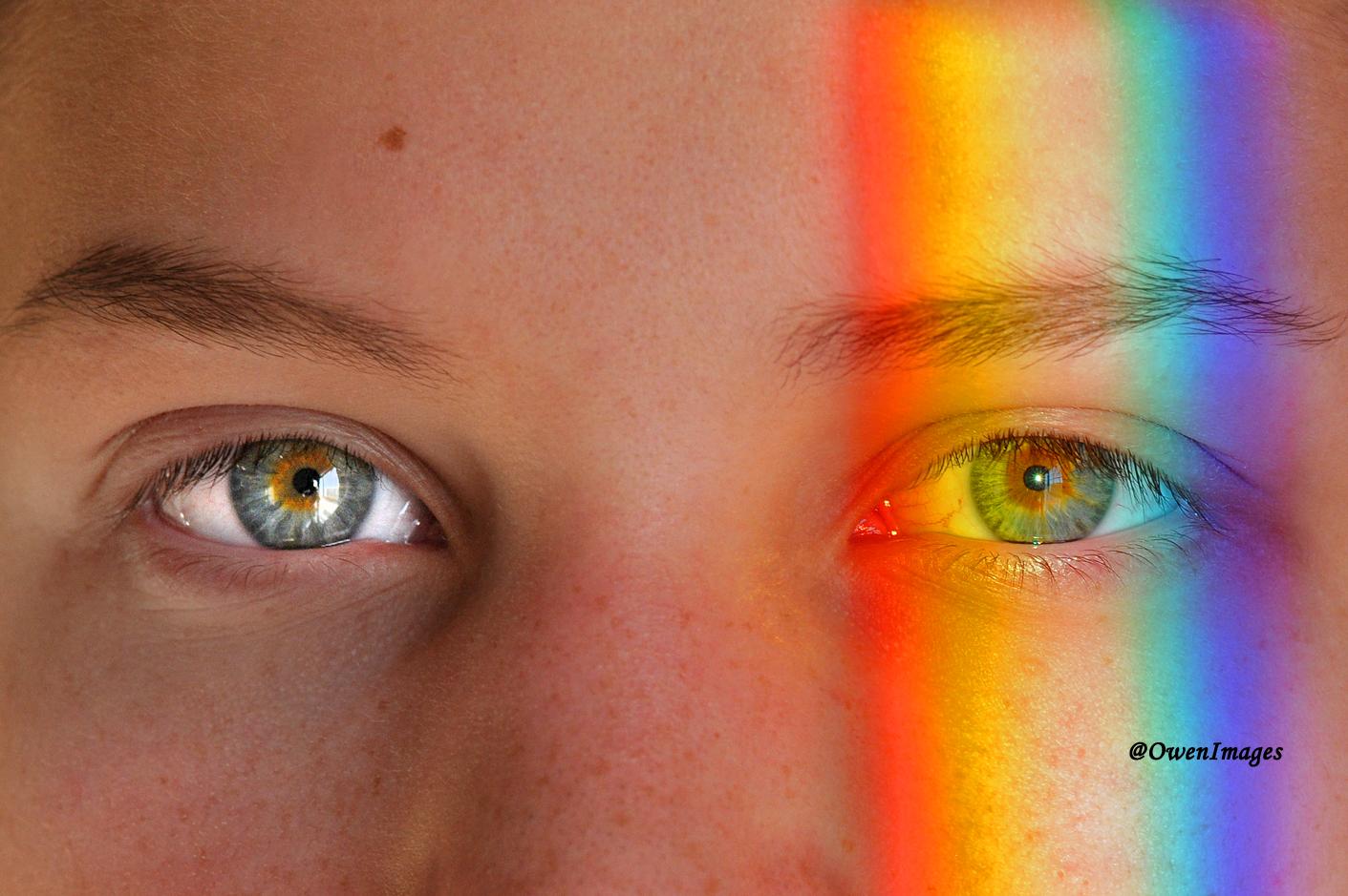 Closeup with prism casting a rainbow