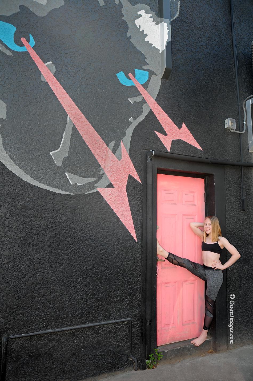Cat mural looking at gymnast in the alley doorway in downtown Saint Petersburg, Florida