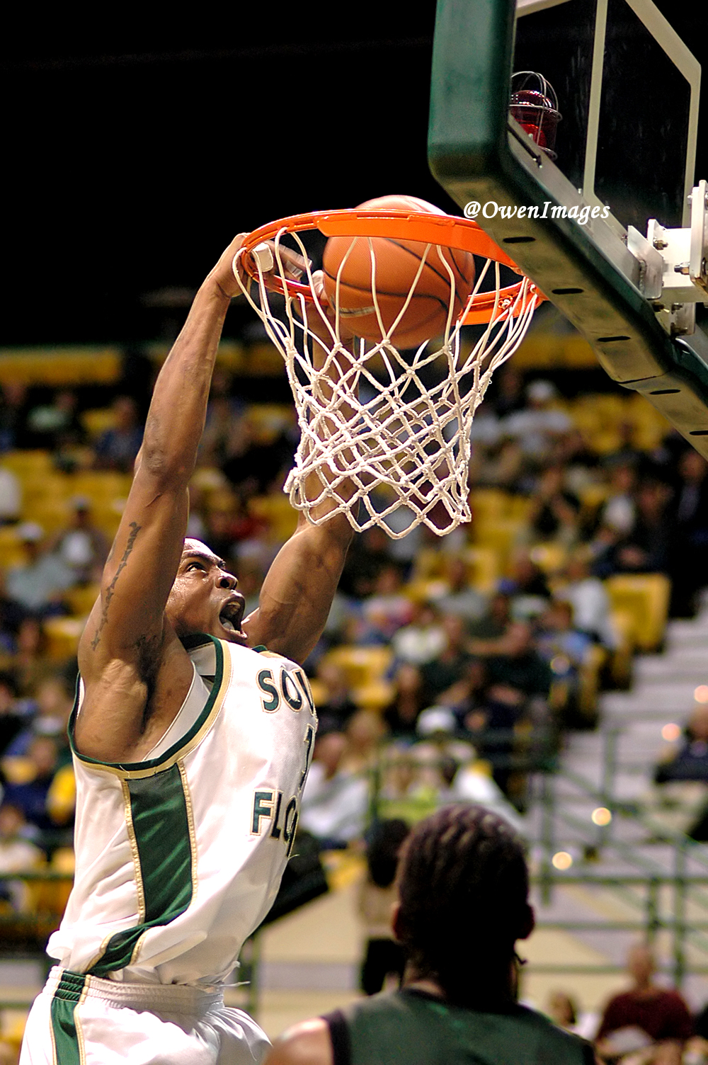 Photography Event Coverage of a USF Basketball Game